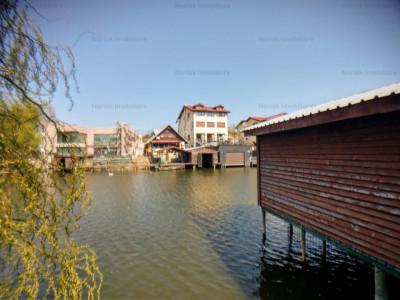 Vanzare vila cu ponton la lacul Snagov